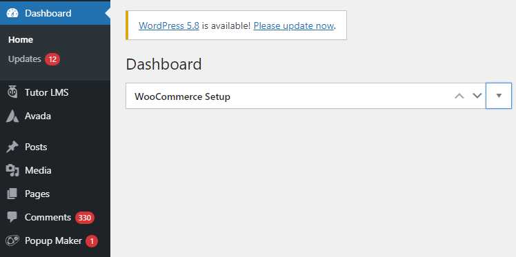Themes and Plugins are not Updating WordPress Regularly core version also updateable
